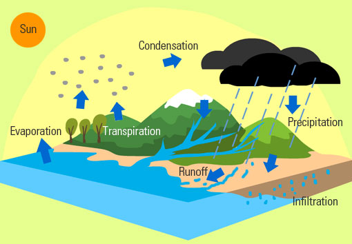 kids water cycle