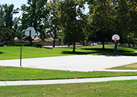 maple grove north basketball court